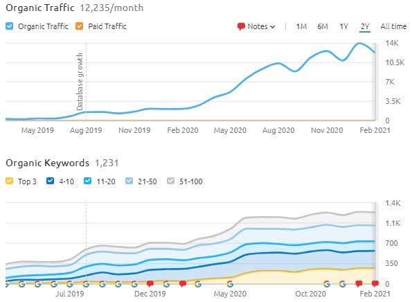 Organic Traffic Rankings from eCommerce website